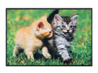 Vaip Lovely Cats 50x75 cm A5-101716