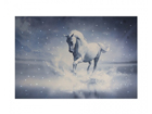LED pilt Canvas Horse 60x40 cm ED-116011