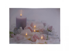 LED pilt Candles & Rose Blossom 30x40 cm ED-117165