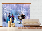Poolpimendav fotokardin Disney Ice Kingdom 180x160 cm ED-87375