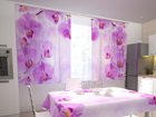 Poolpimendav kardin Kitchen in orchids 200x120 cm ED-98350