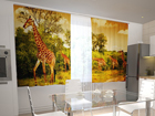 Poolpimendav kardin Giraffes in the kitchen 200x120 cm ED-98445