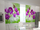 Poolpimendav kardin Lilac tulips in the kitchen 200x120 cm ED-98578