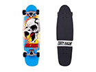 Rula Roarry Tony Hawk TC-99002