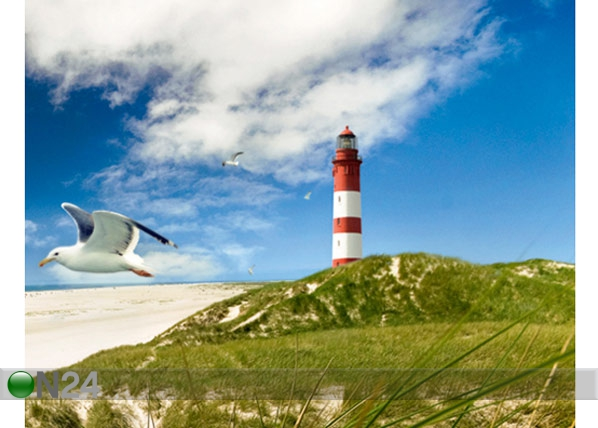 Fototapeet Lighthouse in dunes 300x280cm ED-64861