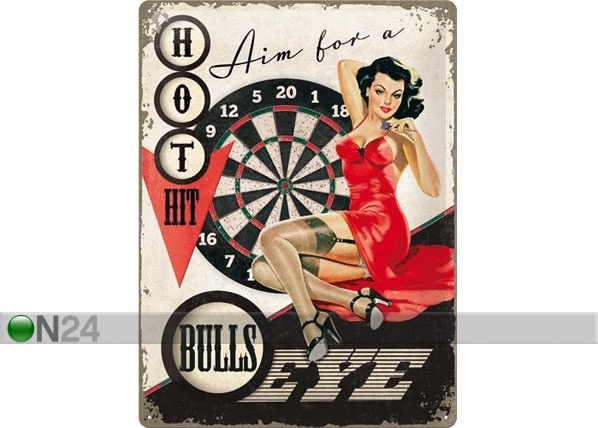 Retro metallposter Aim for a bulls eye 30x40cm SG-78379